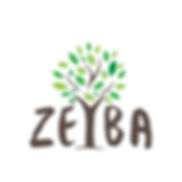 Zeyba Logo.png