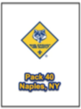 Cub Scouts Pack 40.jpg