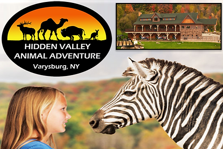 Hidden Valley Animal Adventure Park_edit