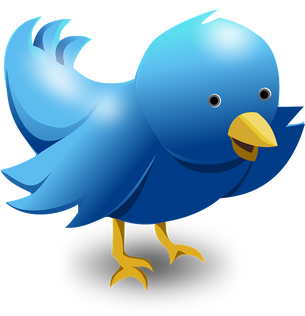 How to Use Twitter To Promote Your Book