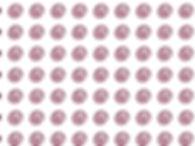 beet_grid.jpg