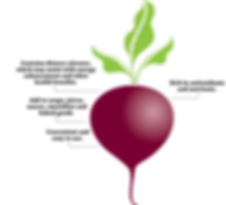 beet_with_points.png