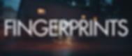 03 FINGERPRINTS.png