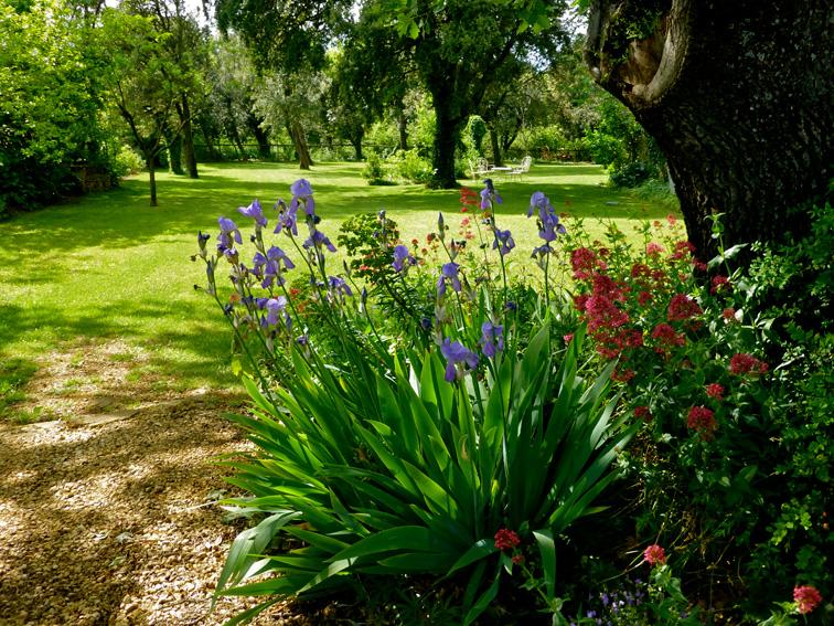 Le jardin ouest