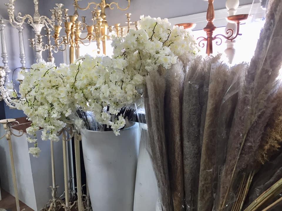 פרחים יבשים - שקדיות פמפס