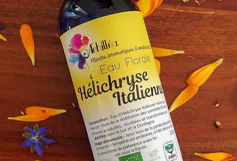 Hélichryse Italienne - Eaux FloralesEssentielles