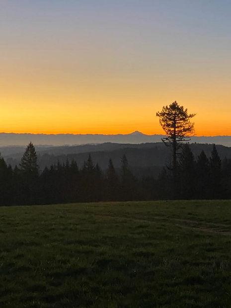 Sky Ridge.jpg