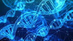 Onderzoekers bereiken positief resultaat bij muizen met AHC door gentherapie!