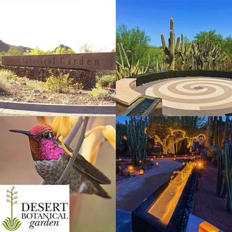 Spend the Day at the Desert Botanical Garden in Phoenix Arizona and enjoy breakfast at Gertrude'