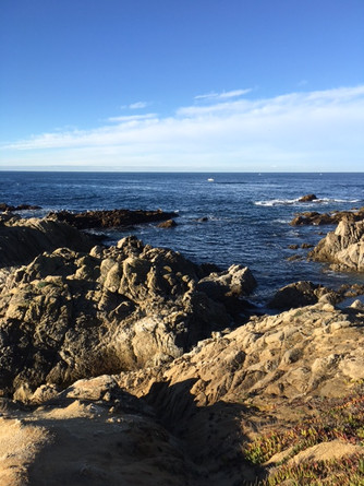 17 Mile Drive California/Lunch at Pebble Beach