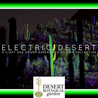 Visit the mesmerizing Electric Desert display at the Desert Botanical Garden and enjoy a wonderful d