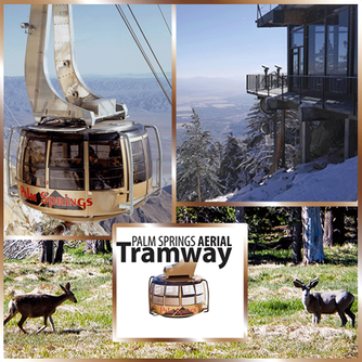 Ride the World's Largest Rotating Tramcar at the Palm Springs Aerial Tramway