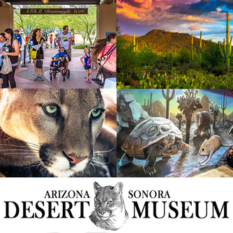 We loved visiting the world famous Arizona-Sonora Desert Museum in Tucson Arizona and having lunch a