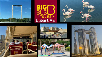 Travel Dubai with a Deluxe Ticket on the Big Bus