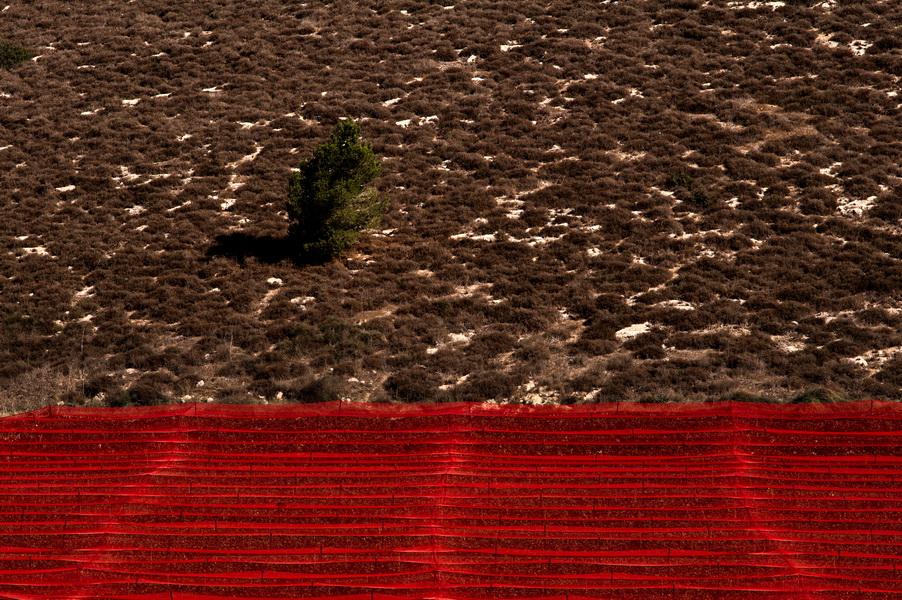 Red Shading--2013--צל אדום