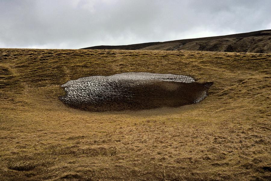 לוויתן באחו--A Whale in the Meadow--2014