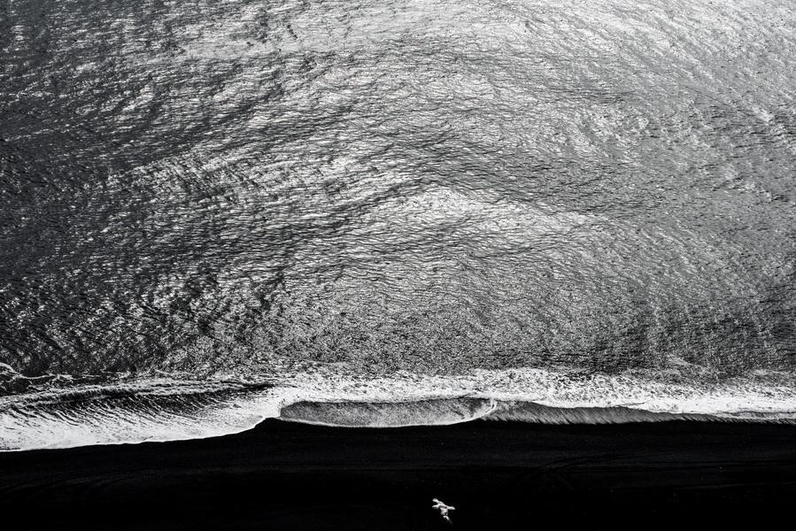 מעוף--Flight--2014