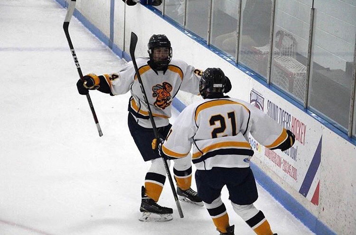 EHHS Co-op Hockey Team Skates for Success