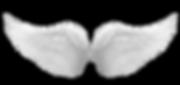 angel wings 2.png