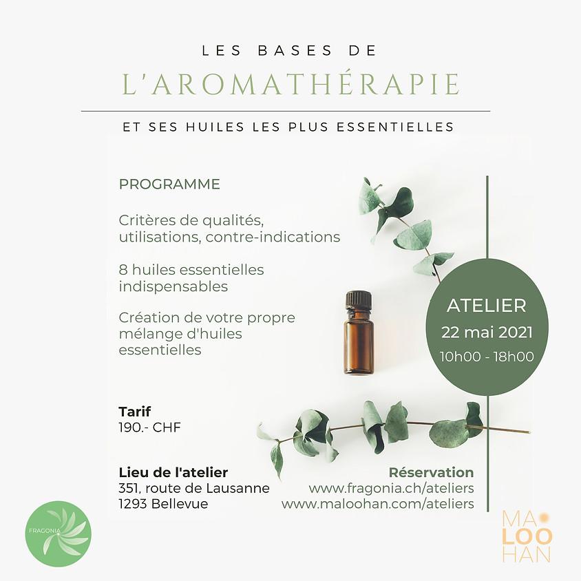 Les bases de l'aromathérapie