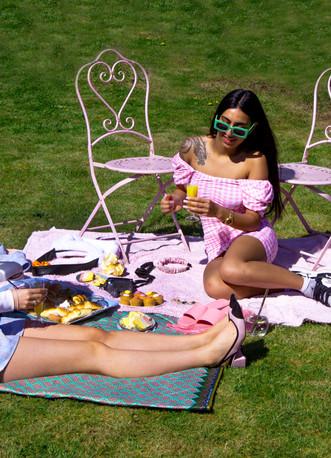 picnic set.jpg