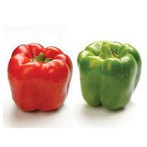 bell pepper.jpeg