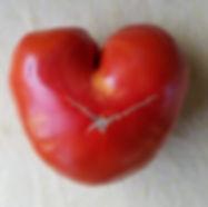 tomatoheart.jpg