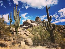 Hike the Sonoran desert preserve