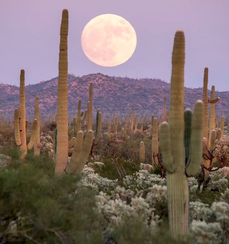 Full moon over the desert