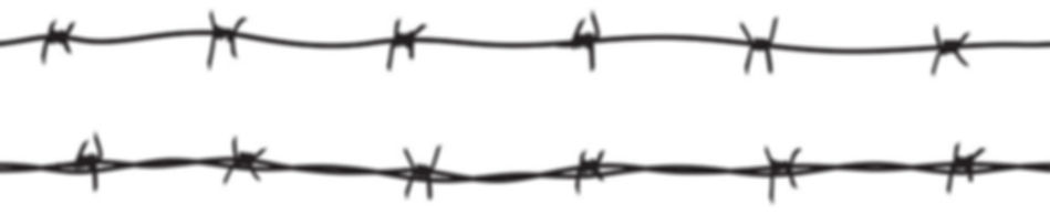 barbed wire2_edited.jpg
