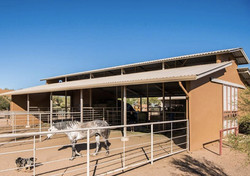 Luxury barn and stalls
