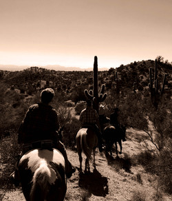 trail riding in the Tonto National