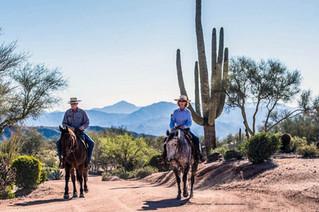 horses riding in desert