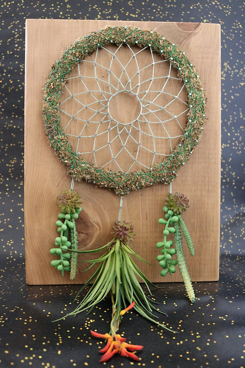 Dream Catcher String Art With Faux Succulents Wall Hanging