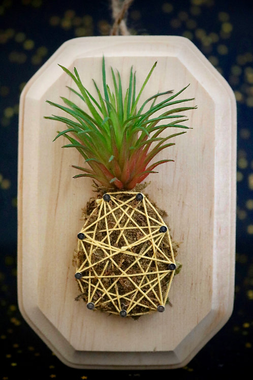 Mini Pineapple String Art With Faux Succulents