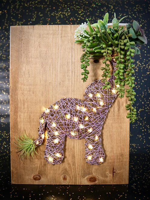 Elephant String Art With Faux Succulents Wall Hanging