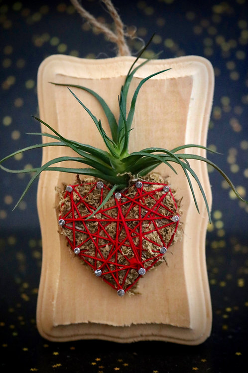 Heart/Strawberry String Art With Faux Succulents