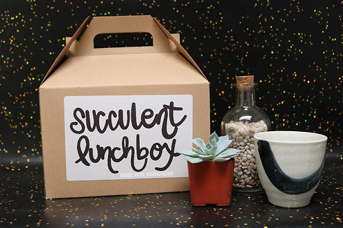 Limited Edition Kids Succulent Lunchbox