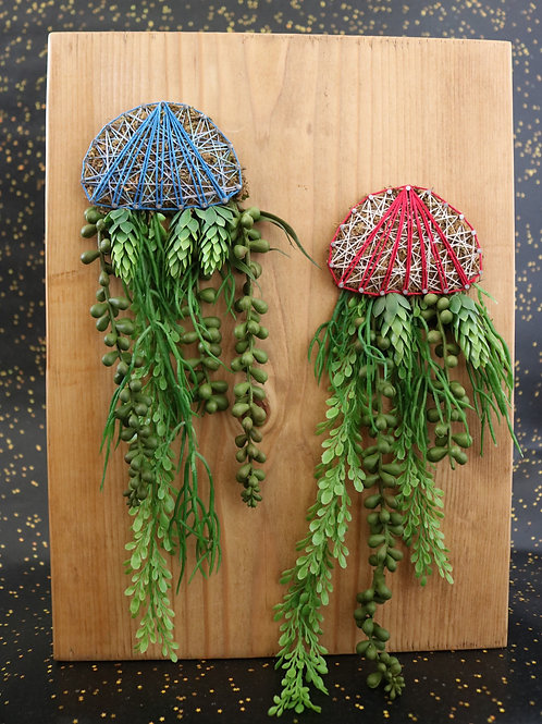 Jellyfish String Art With Faux Succulents Wall Hanging