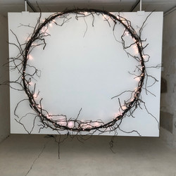 Christine Ferrer - Cercle lumineux en racines de vigne
