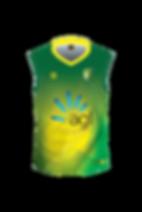 SCD-Cricket-Vest-Rev-FRONT.png