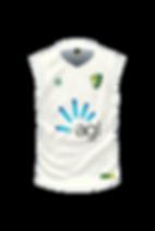 SCD-Cricket-Vest-Cream-FRONT.png
