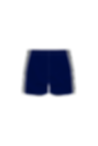 SCD-Shorts-BACK.png