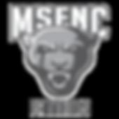MSFNC.png