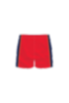 SCD-Bball-Shorts-BACK.png