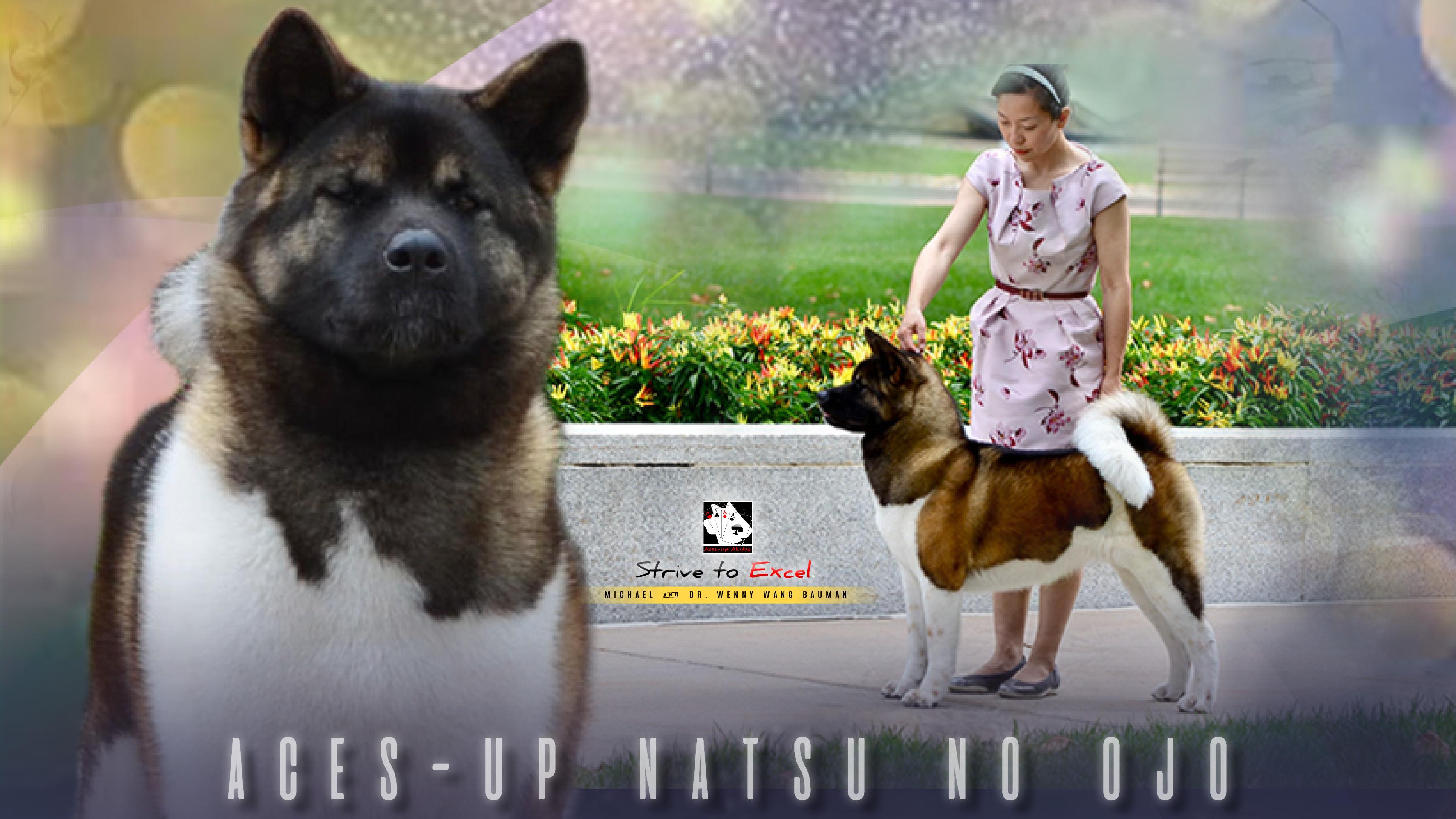 Facebook Cover: Natsumi