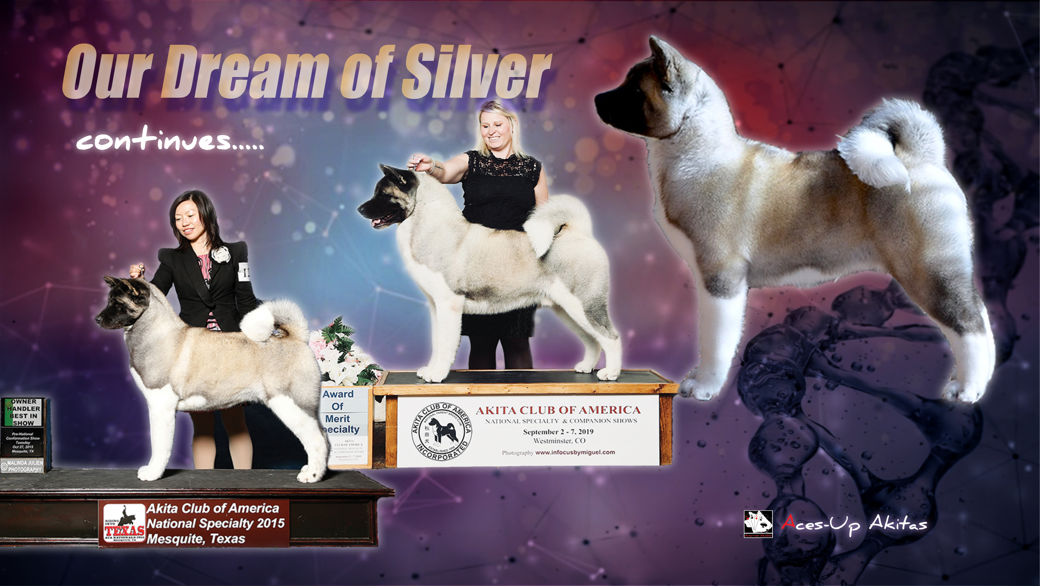 Facebook Cover: The Silver Dream
