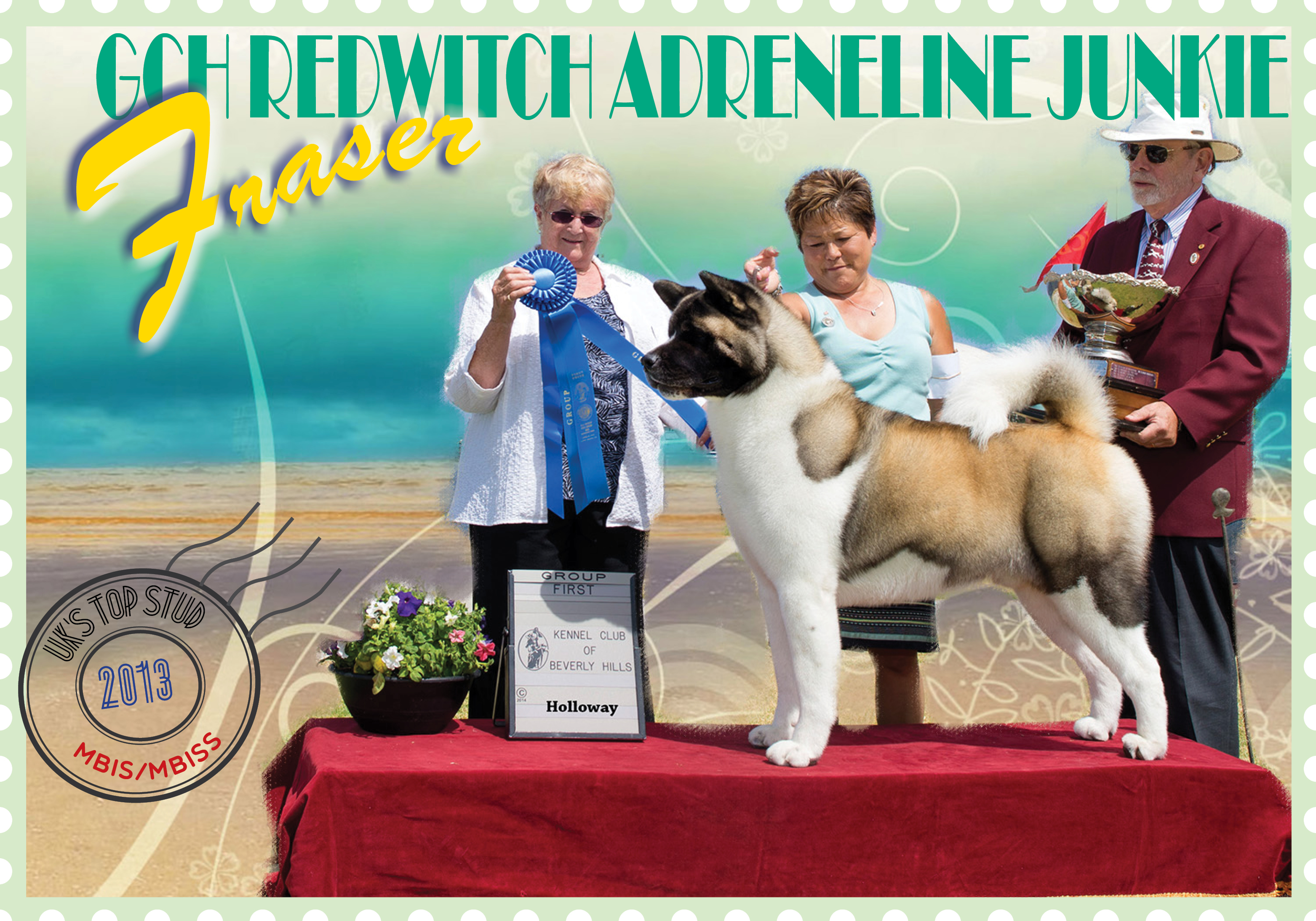 AKC Winners Gallery (Jun 2014)