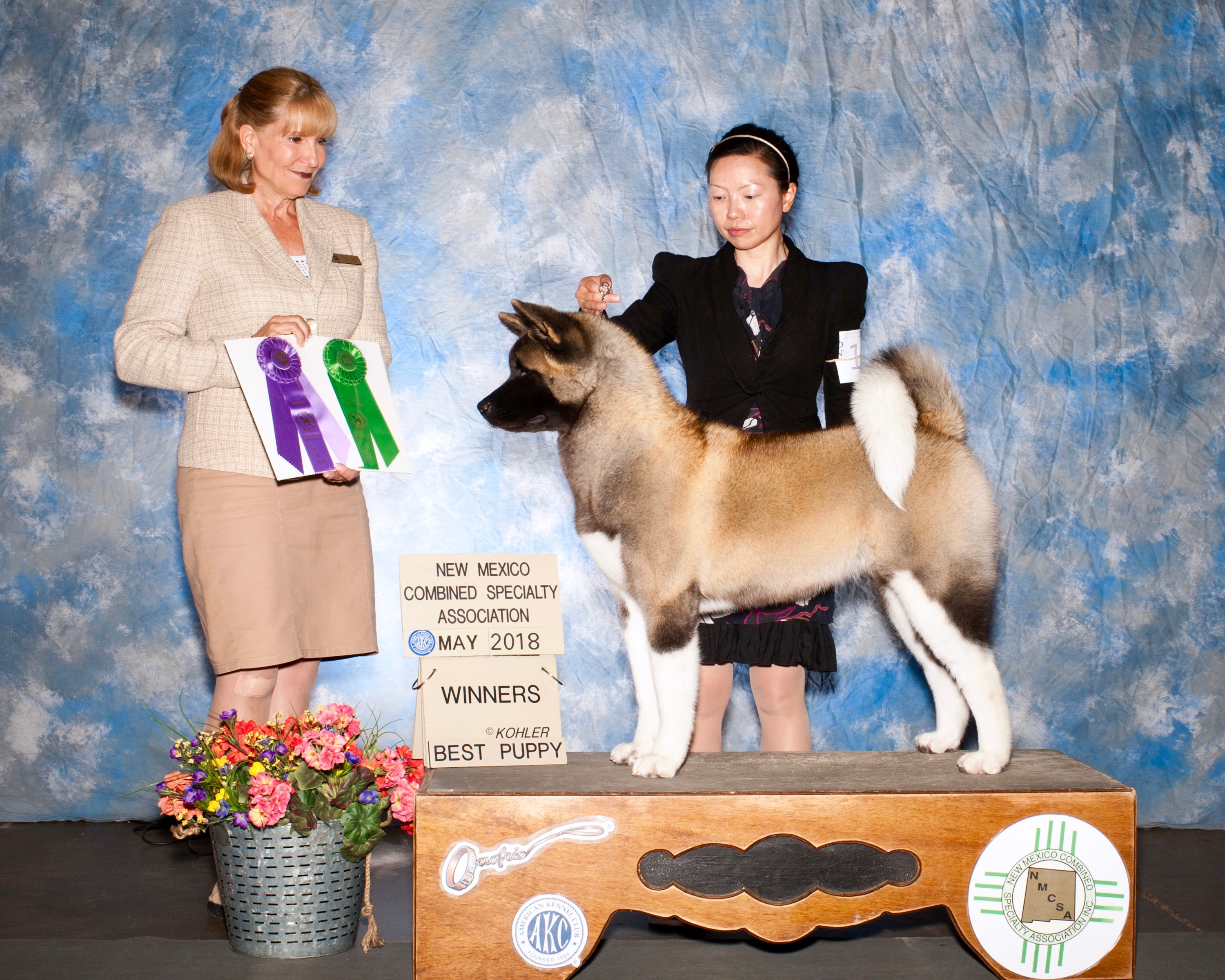 WB & Best Puppy @ Regional Specialty