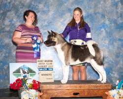 Eclipse Winners Dog @ Reg Specialty